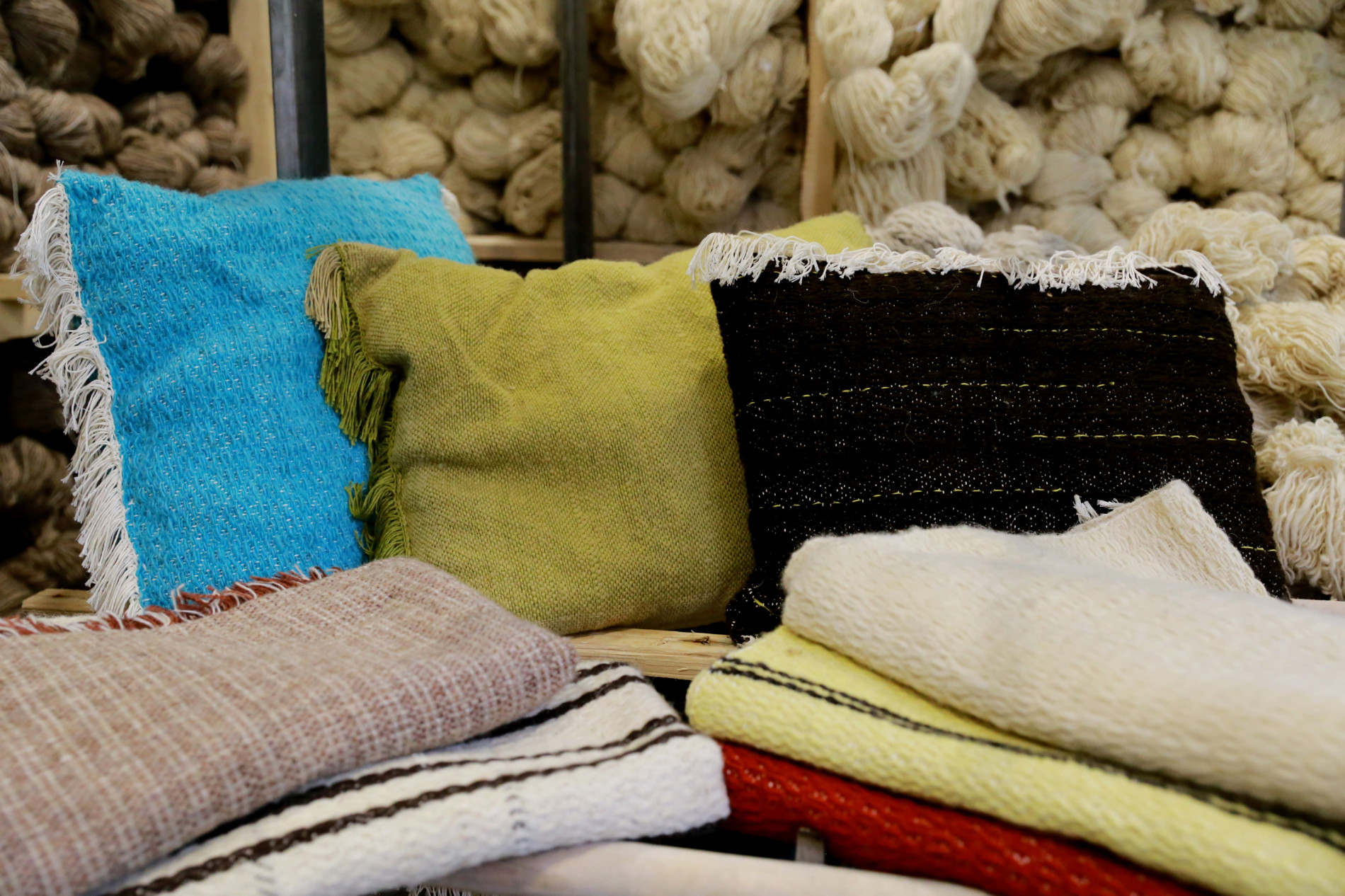 Two Companies with 9 Openings are being established with the support of EU in the Wool Value Chain in Shirak